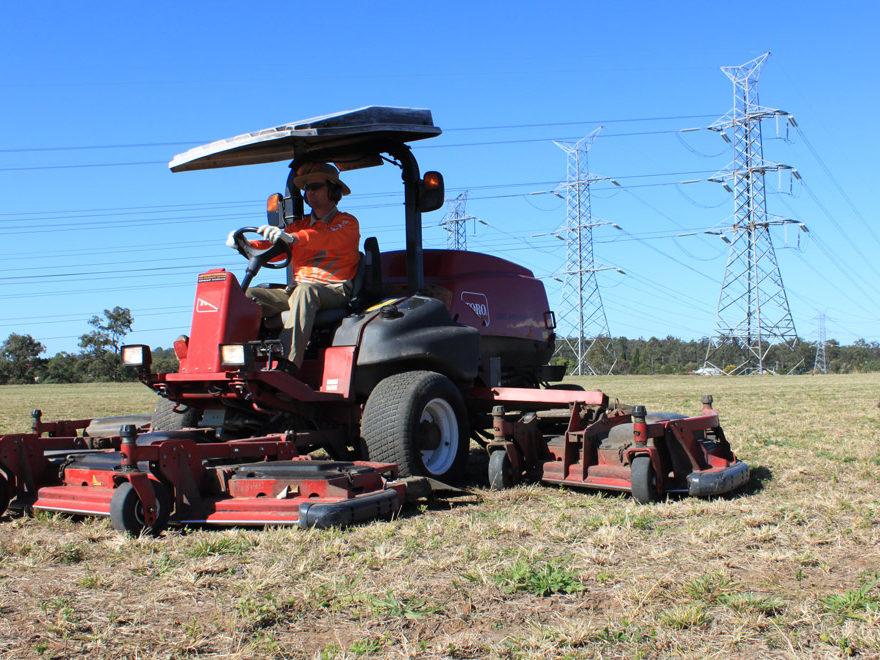 Landscape Construction and Lawn care services
