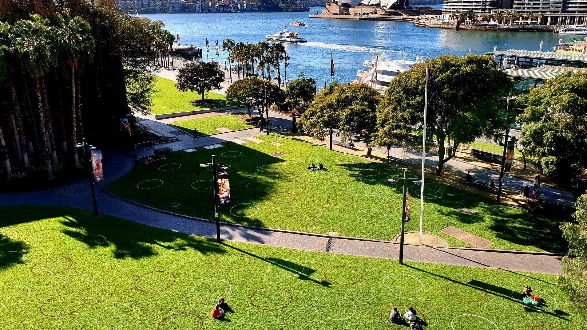 Sydney Landscape Maintenance